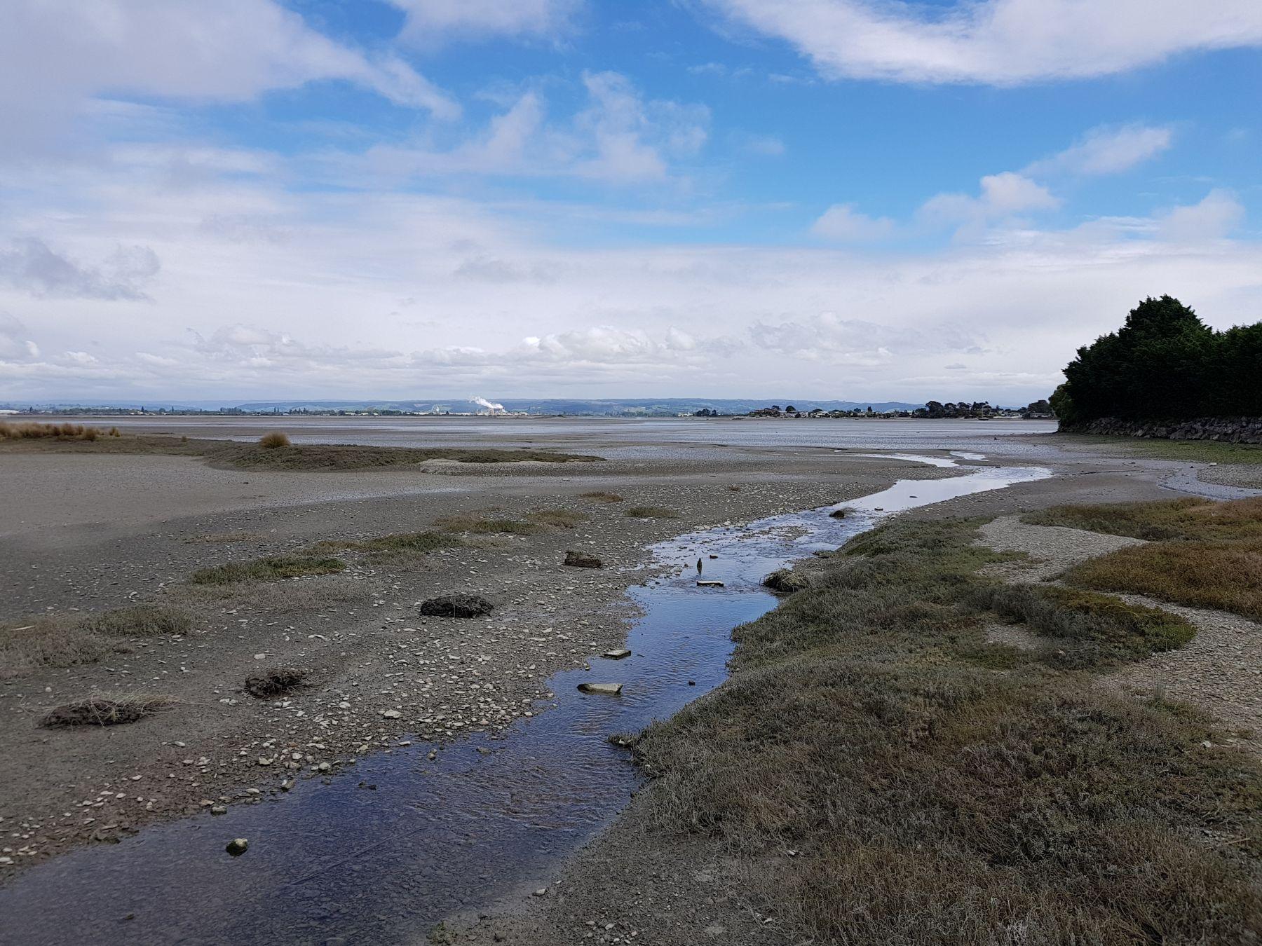 Waimea Estuary, Nelson